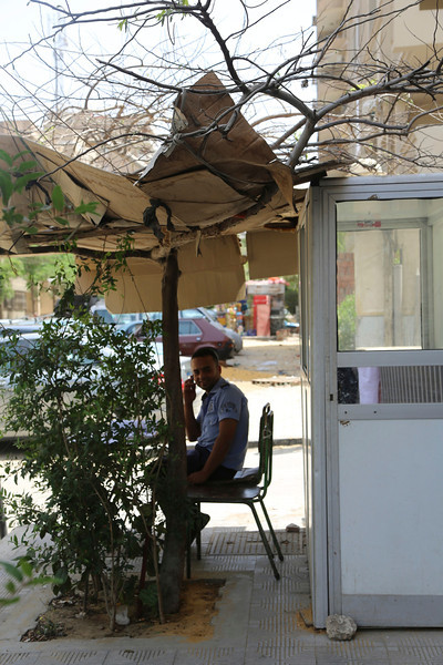 innovative shelter