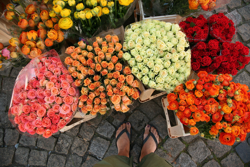 feet and roses