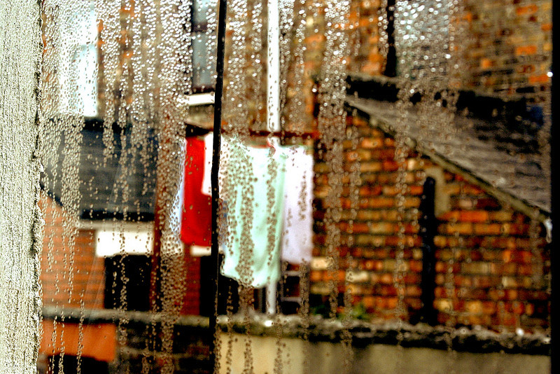 rainy day on shaw street