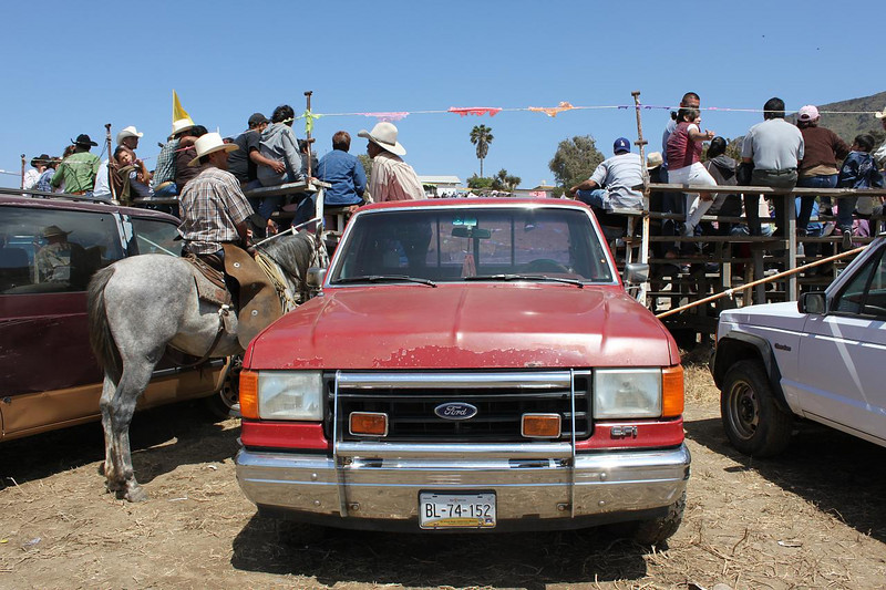 truckes y caballos