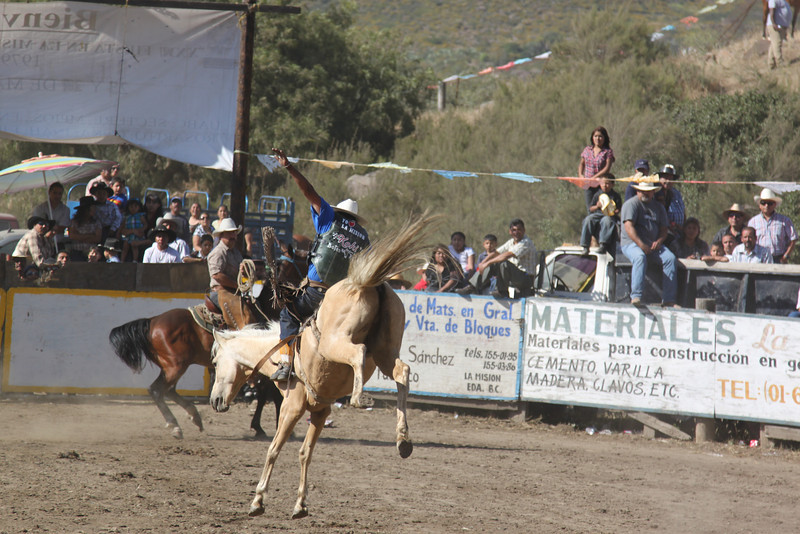 rodeo 14