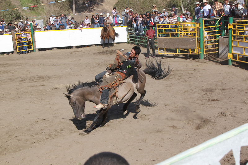 rodeo 13