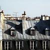 marais roof