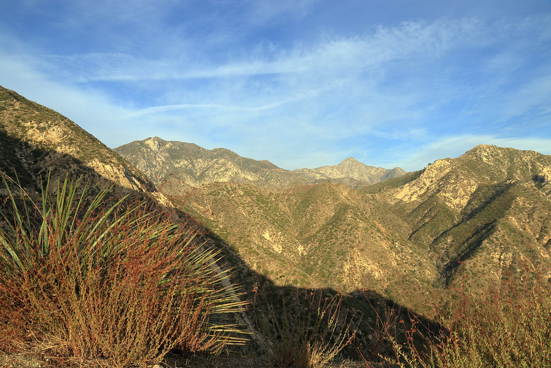 Angeles national Forest, San Gabriel mountains, California