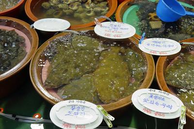 Fish market, Korea