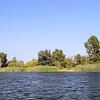In the lake of El Dorado East Regional Park