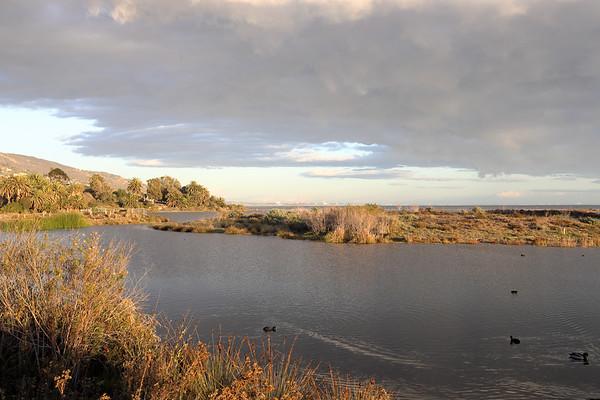 Peaceful Lagoon