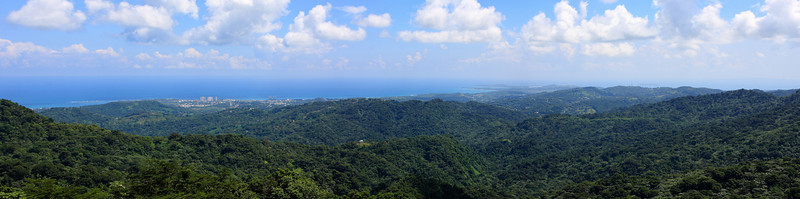 National rain forest, Puerto Rico