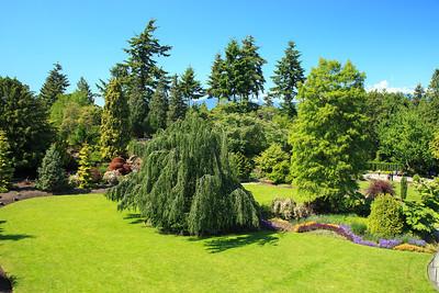 Queen Elizabeth park, Vancouver Canada
