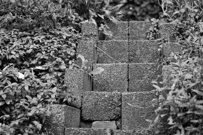 Garden Stairs Grandpa Built