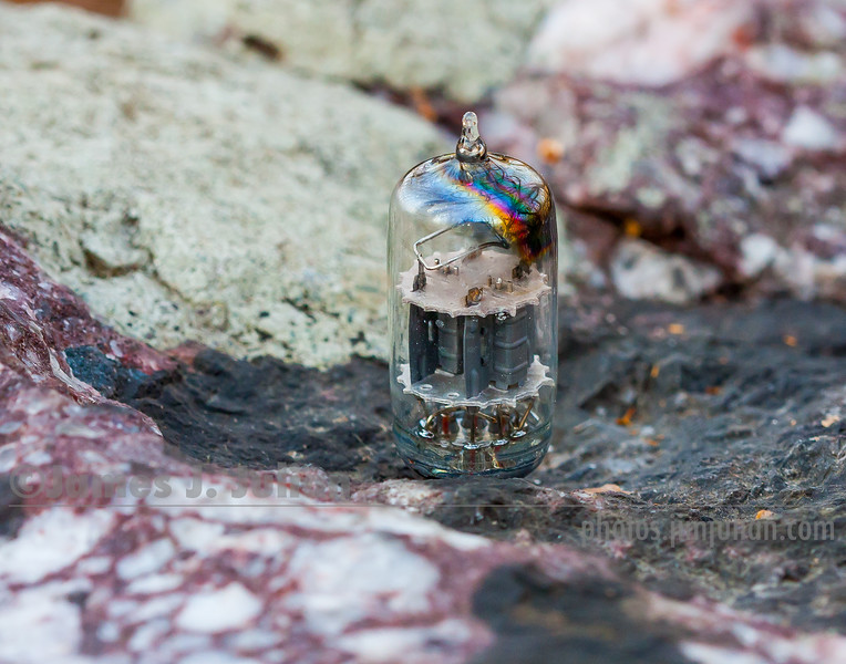 Vacuum Tube Lost in Nature 5