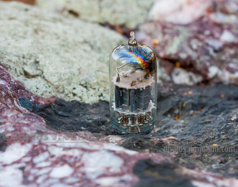 Vacuum Tube Lost in Nature 5