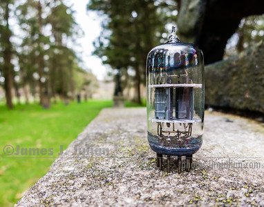 Vacuum Tube Lost in the Park 3