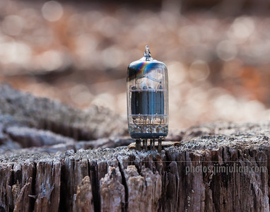 Vacuum Tube Lost in Nature 3