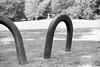 Iron Loops BW