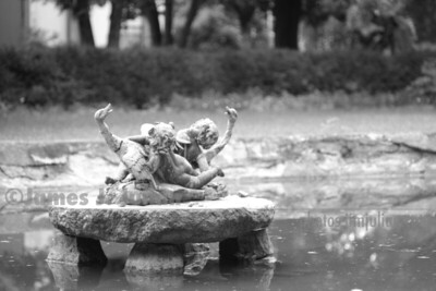 The Pond Cherubs Backwards BW