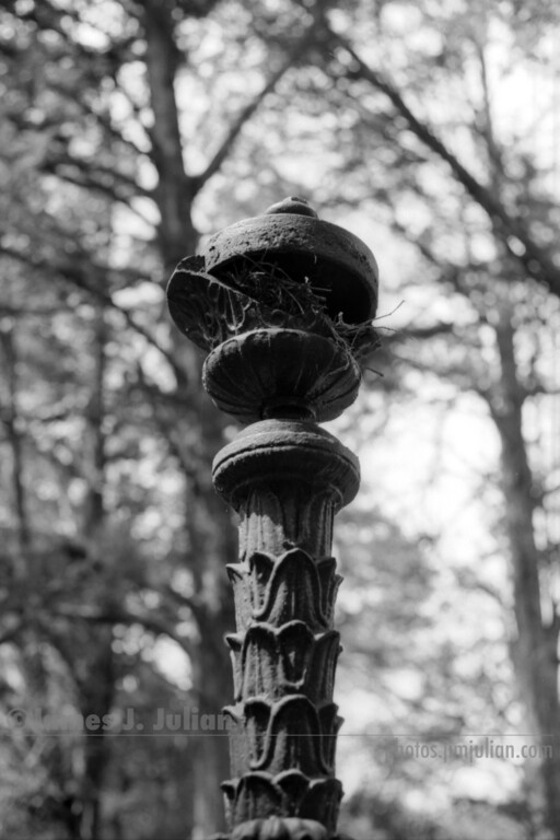 Broken Iron Tower Bird's Nest BW