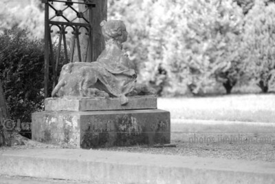 Lion Lady Statue Backwards BW