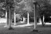 Isolated Pillars in Shadow BW