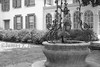 Well Bucket Plants and Mansion BW