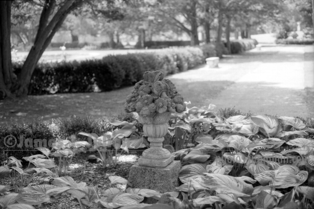 Park Centerpiece Close BW
