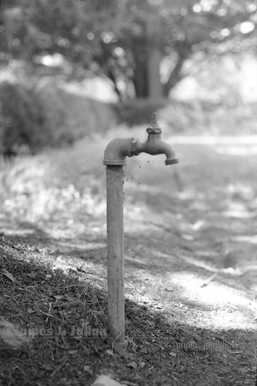 Water Spigot and Tiny Spiderwebs 2 BW