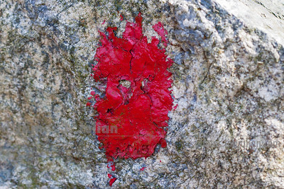 Trail Marker Painted on a Rock Point