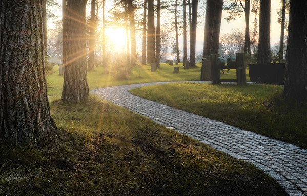 A Sunstar Pathway