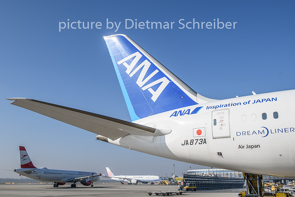 2019-02-17 JA873A Boeing 787-9 All Nippon AIrways