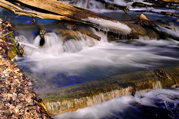 Flowing water and logs