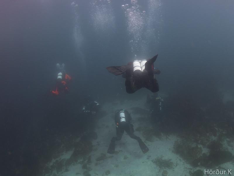 Lets go diving