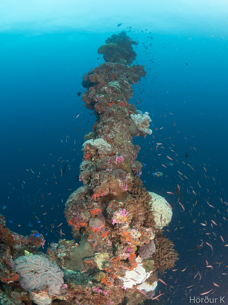 Mast of Nippo Maru