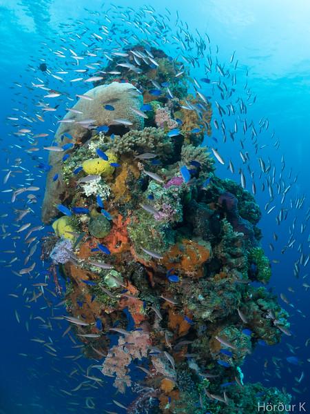Mast of the Hoki maru