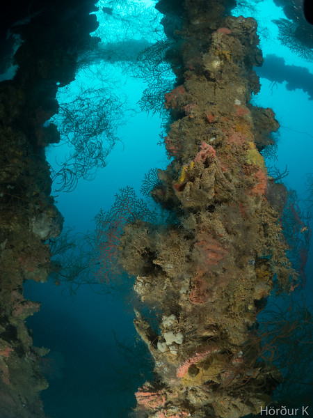 Looking out of the cargo hold on Yamagiri Maru