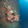 Nippo Maru's bow anchor