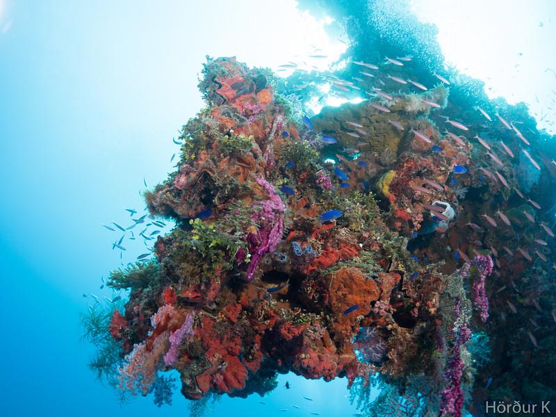 Mast of Hoki Maru