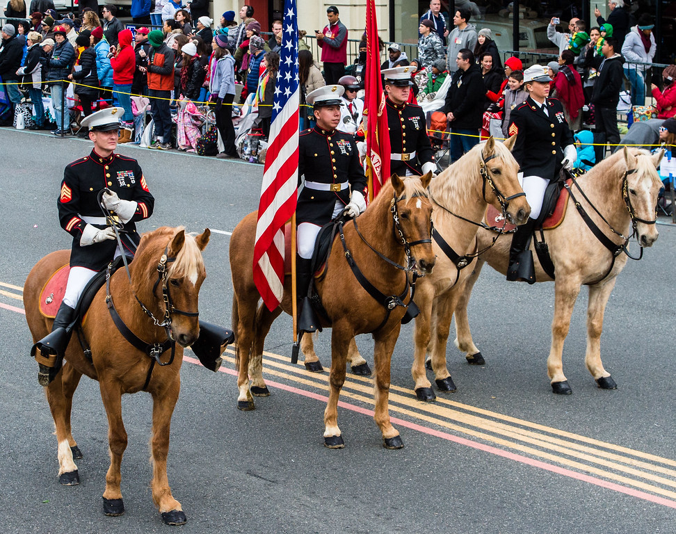 . United States Marine Corps Mounted Color Guard on Colorado Blvd. during the 2017 Rose Parade in Pasadena on Monday, January 2, 2017. (Photo by Watchara Phomicinda, San Gabriel Valley Tribune/ SCNG)