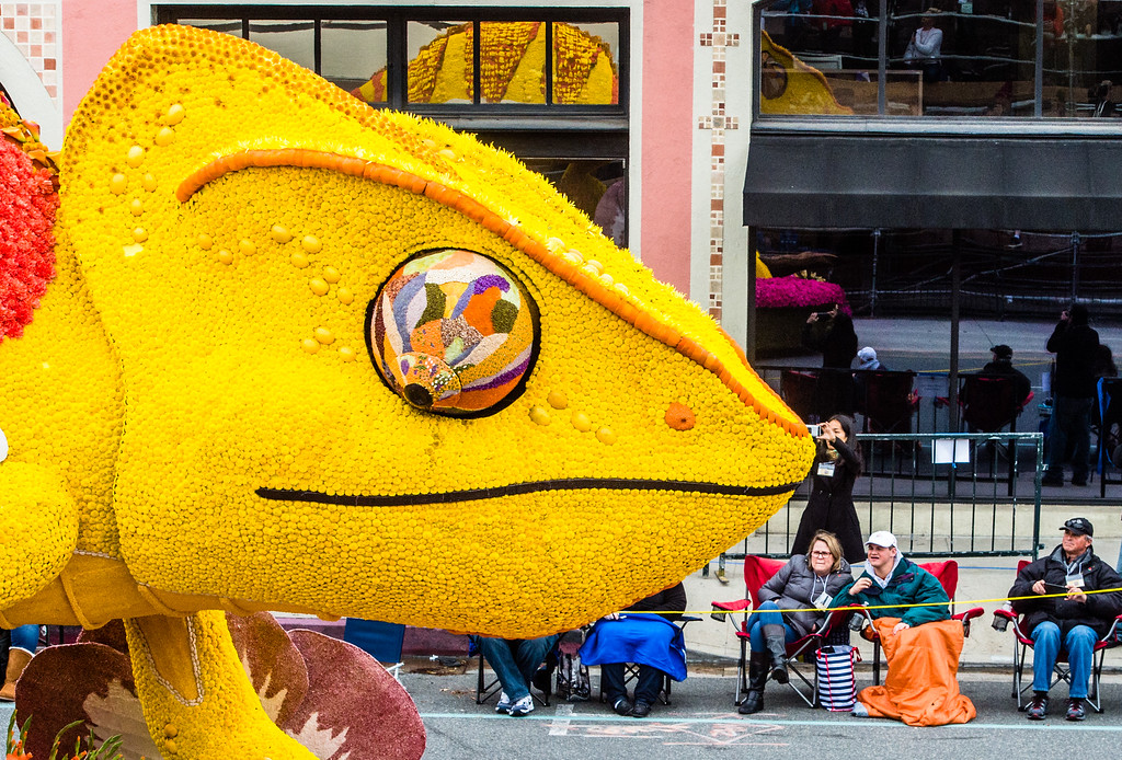 . Cal Poly Universities �A New Leaf� float on Colorado Blvd. during the 2017 Rose Parade in Pasadena on Monday, January 2, 2017. (Photo by Watchara Phomicinda, San Gabriel Valley Tribune/ SCNG)