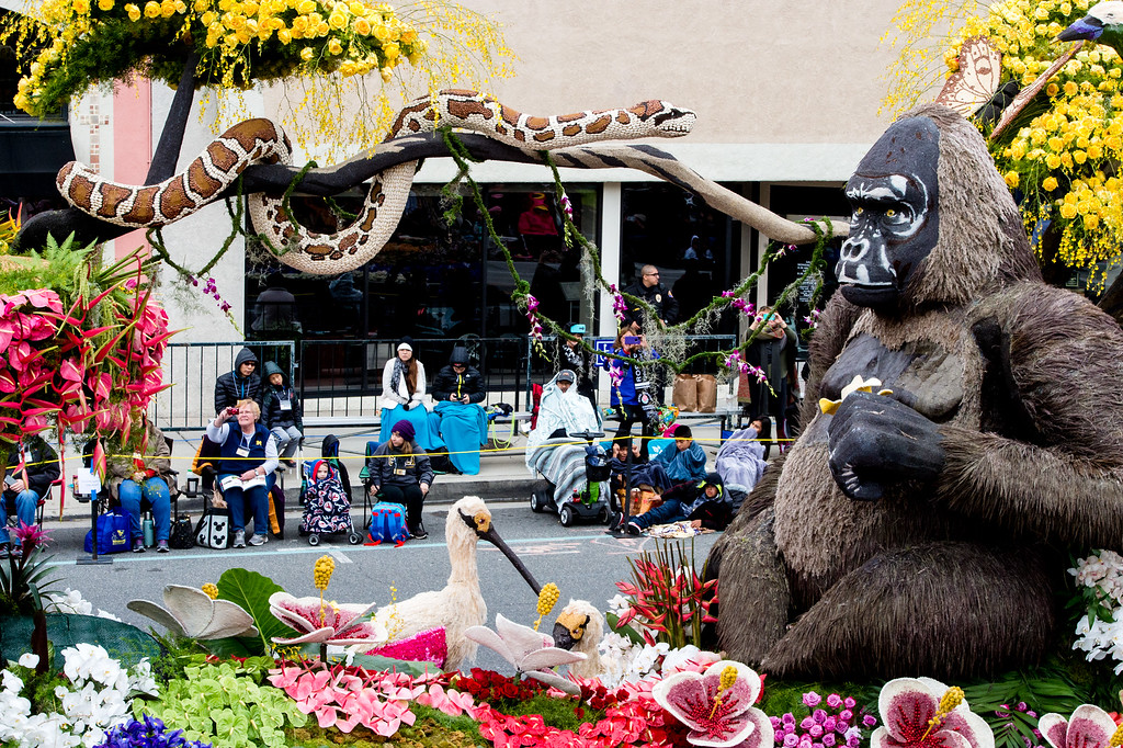 """. Western Asset Management Company - �Prosperity in the Wild\"""" float on Colorado Blvd. during the 2017 Rose Parade in Pasadena on Monday, January 2, 2017. (Photo by Watchara Phomicinda, San Gabriel Valley Tribune/ SCNG)"""