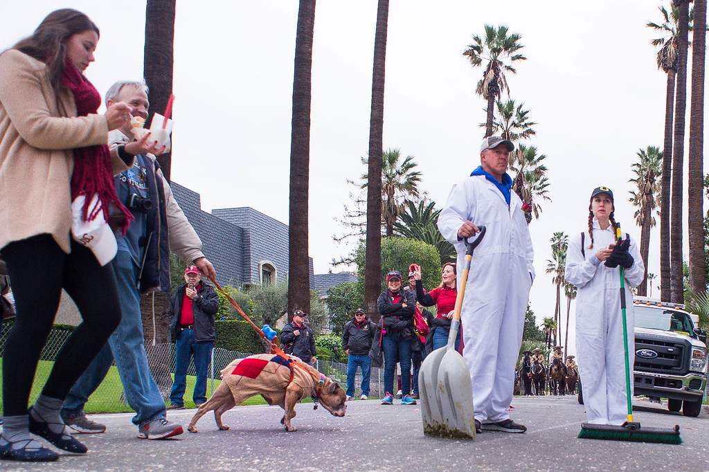 . The 2017 Rose Parade moves along Orange Grove Boulevard in Pasadena, Calif. on Monday, Jan. 2, 2017. (Photo by Sarah Reingewirtz, Pasadena Star-News/SCNG)