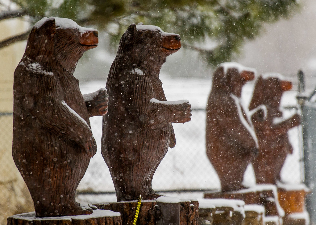 . Carved bear decorations during a snowstorm in Big Bear City, Thursday, Jan. 12, 2017. (Eric Reed/For The Sun/SCNG)