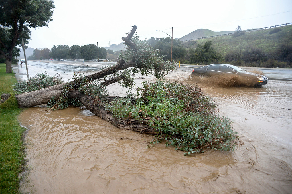 . A car drives through water around a tree which fell and blocked one southbound lane of The Old Road in Santa Clarita Sunday as heavy rain falls in the area.   (Photo by David Crane, Los Angeles Daily News/SCNG)
