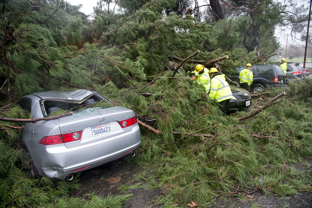 . Crews work to remove a tree that fell on to parked cars at 23401 Newhall Ave, Santa Clarita, Friday, February 17, 2017.    (Photo by Hans Gutknecht, Los Angeles Daily News/SCNG)