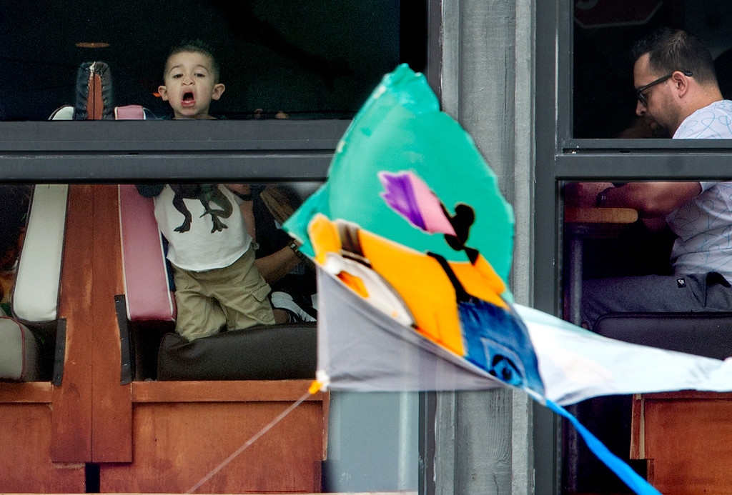 . A boy presses his face against a window of a restaurant up on the pier as he glances at the kites at the 43rd Annual Festival of the Kite at the Redondo Beach Pier in Redondo Beach Sunday, March 12, 2017. (Photo by Thomas R. Cordova, Daily Breeze/SCNG)