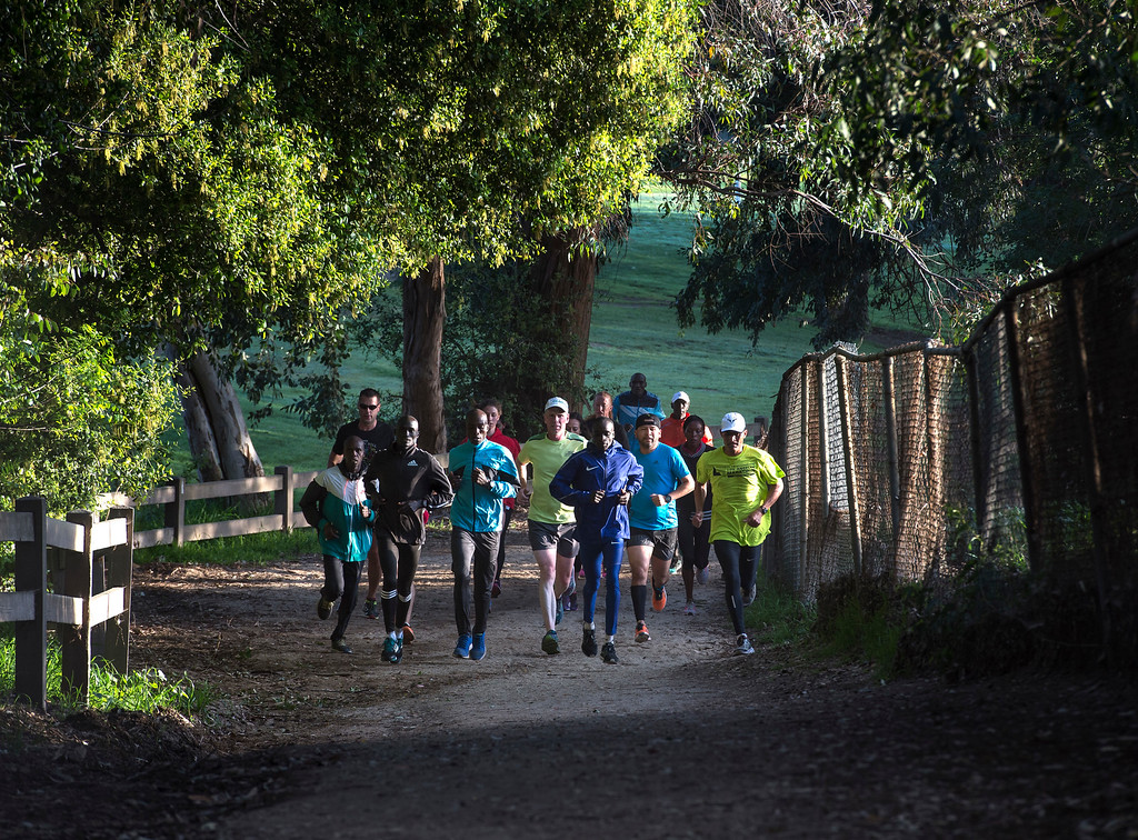. Daniel Limo, third from the right, of Kenya, 2015 Skechers Performance Los Angeles Marathon Champion, runs with  elite marathon runners from Kenya and others at Griffith Park in Los Angeles on Friday, March 17, 2017. (Photo by Ed Crisostomo, Los Angeles Daily News/SCNG)