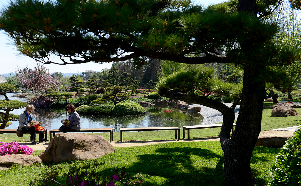 . Two visitors enjoy the 70 plus degree temperatures on Monday, March 20, 2017.  The weather is expected to cool with a chance of rain over the next few days.  The Japanese Garden is a 6.5 acres public Japanese garden located on the grounds of the Tillman Water Reclamation Plant adjacent to Woodley Park, in the Sepulveda Basin Recreation Area.  (Photo by Dean Musgrove, Los Angeles Daily News/SCNG)