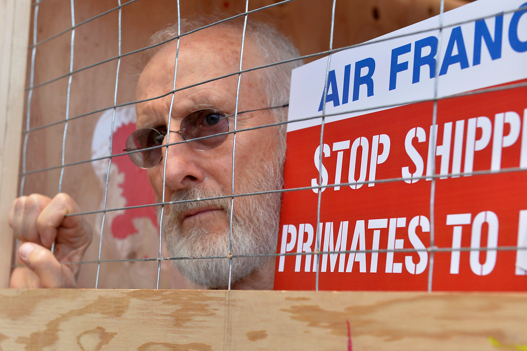. James Cromwell who caged himself in a shipping crate protest Air France with more than 50 PETA members at Tom Bradley International Terminal at Los Angeles International Airport in Los Angeles, CA. Monday April 28, 2014. According to PETA Air France is the only major airline in the world that still ships primates to laboratories. (Thomas R. Cordova/Press-Telegram/Daily Breeze)