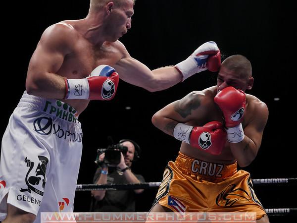 Ronald Cruz vs Dmitry Mikhaylenko 11/8/2014