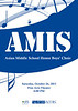 AMIS 2013-Poster