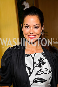 Brooke Burke. Photo by Tony Powell. 18th Annual White House Correspondents' Garden Brunch. Beall-Washington House. April 30, 2011